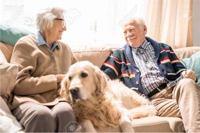 Altenhilfe